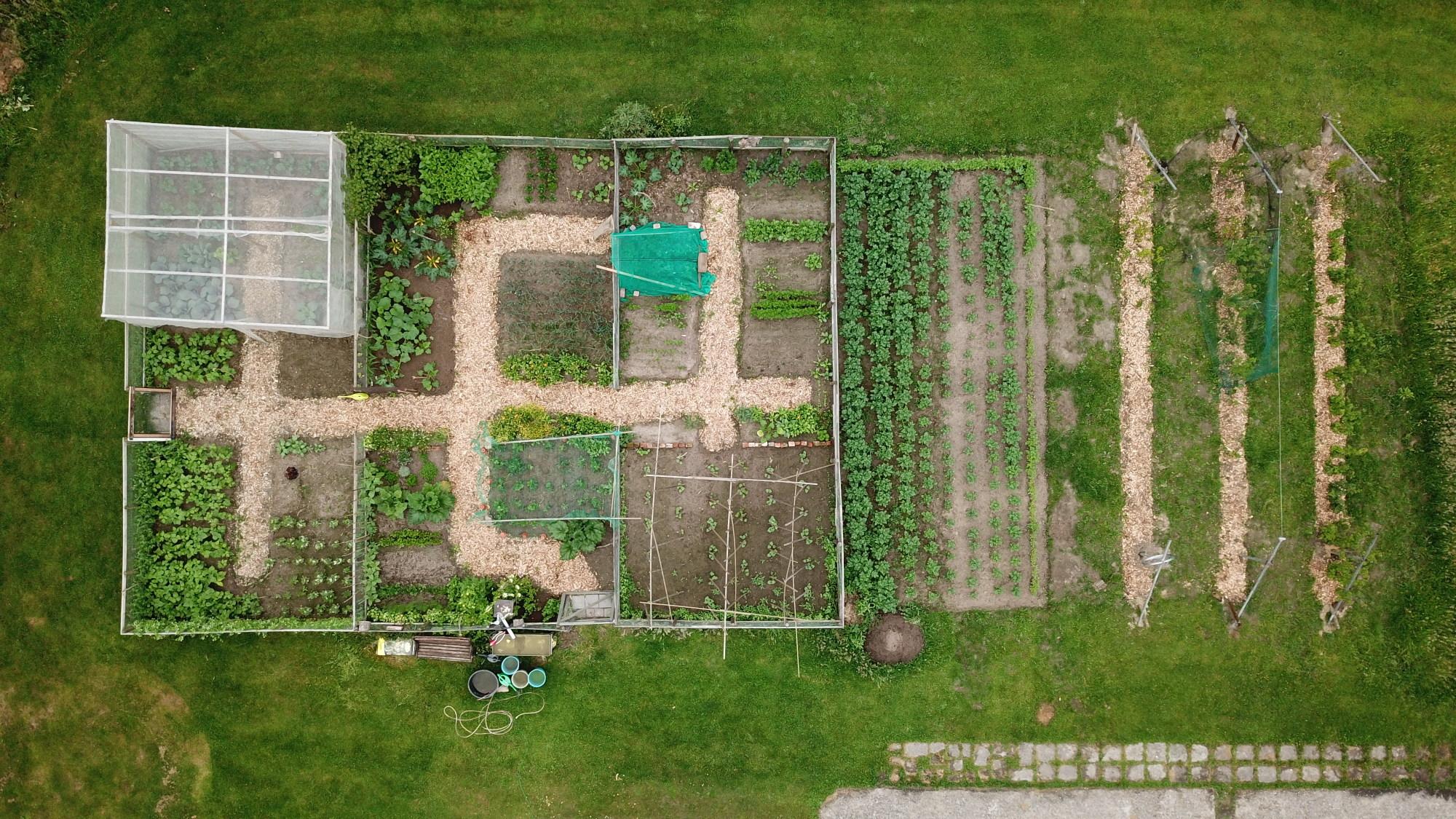 Moestuinverhaal: Drone boven de groentetuin!