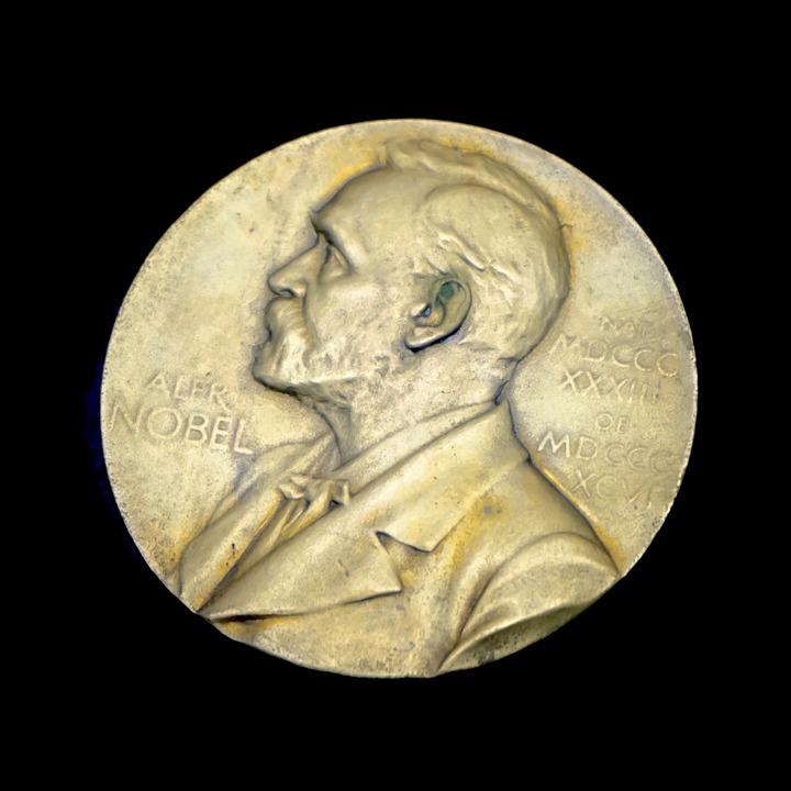 Daarom de Nobelprijs: een effectieve aanval op tumoren