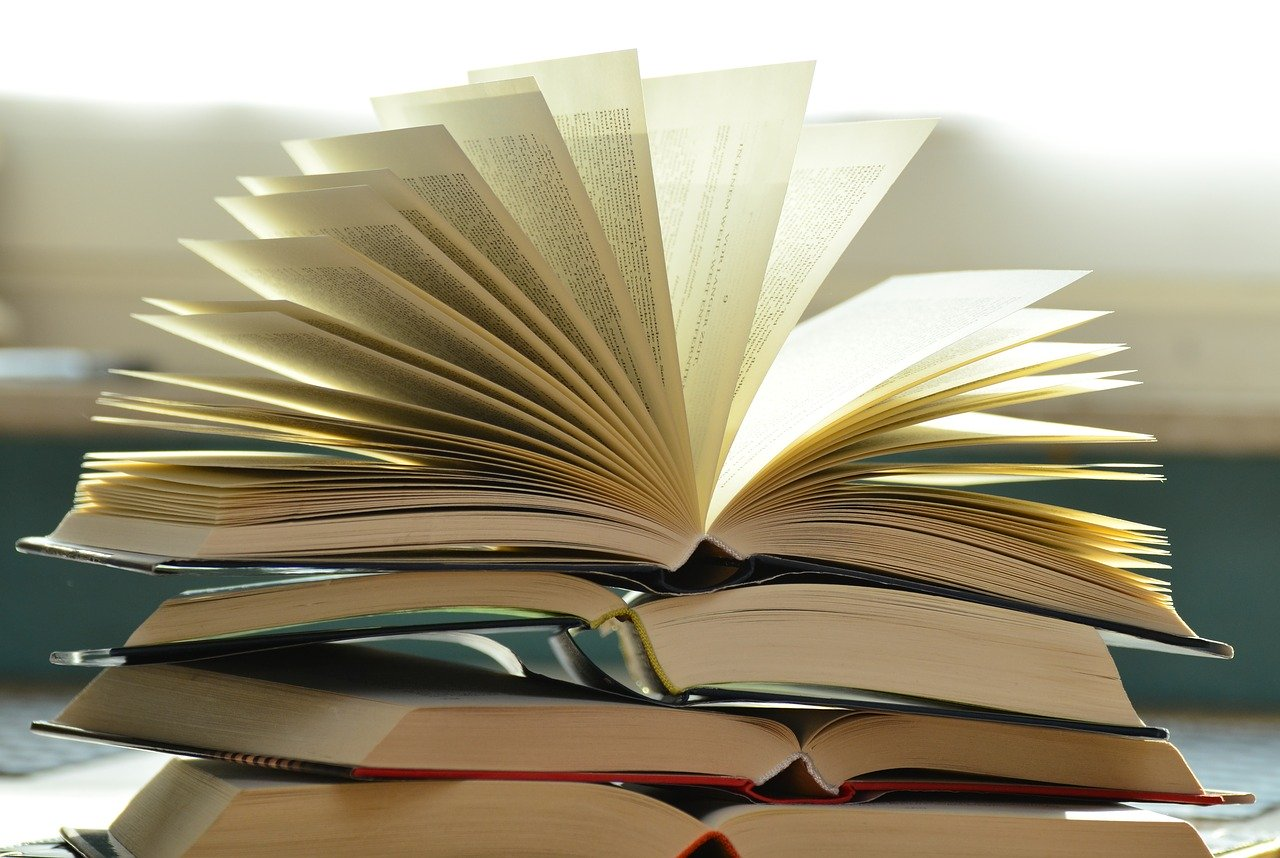 Leesliefhebbers opgelet: al onze boektips op een rijtje!